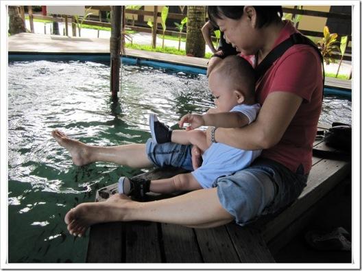 fish spa 3
