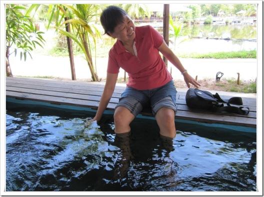 fish spa 4