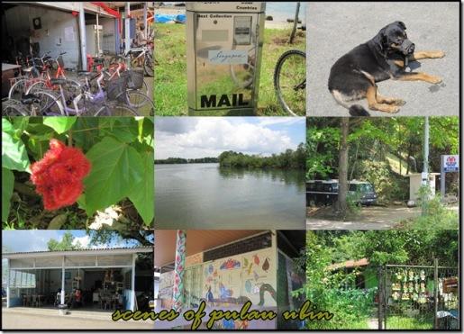 scenes of pulau ubin