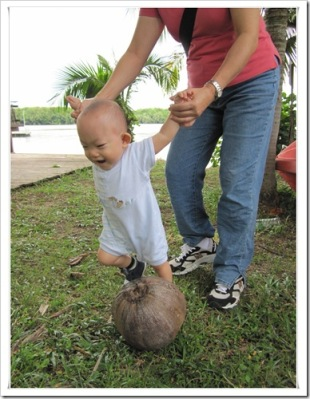 xi en playing with coconut