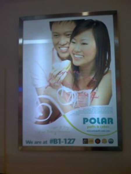Polar Puff Billboard