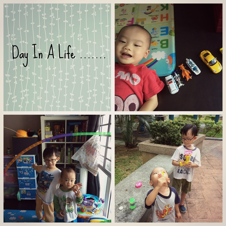 Day in a Life 1